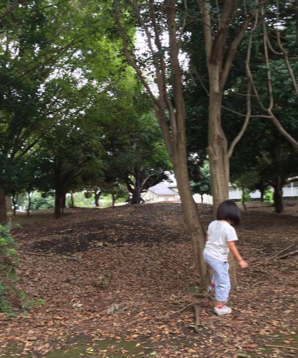ワンパク広場の森