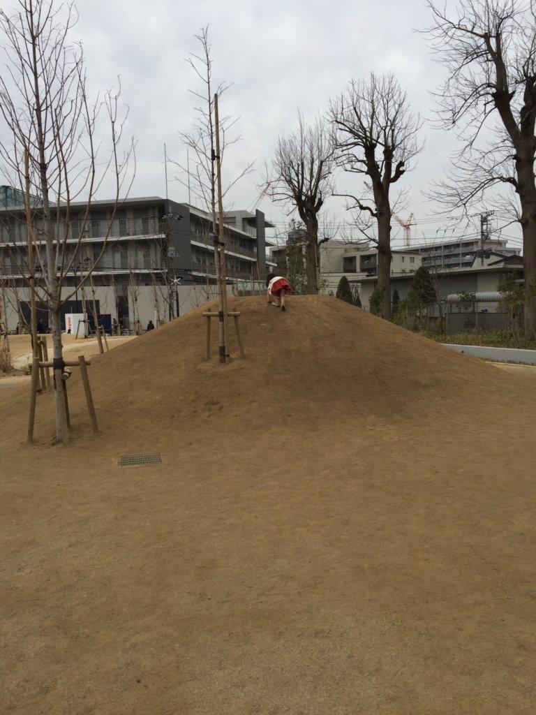 広町みらい公園の山